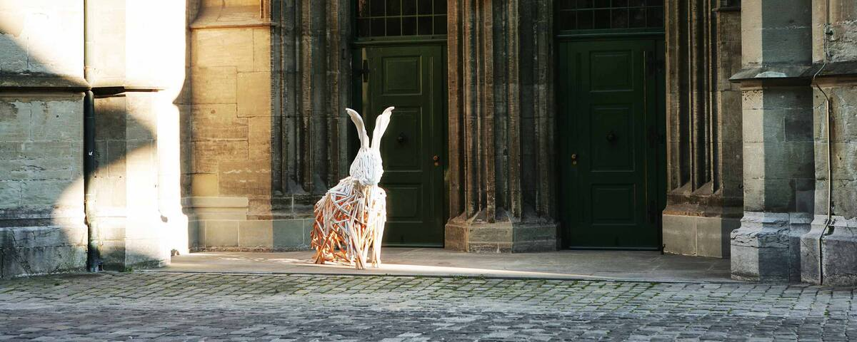 the-white-rabbit_galerie_42.jpg